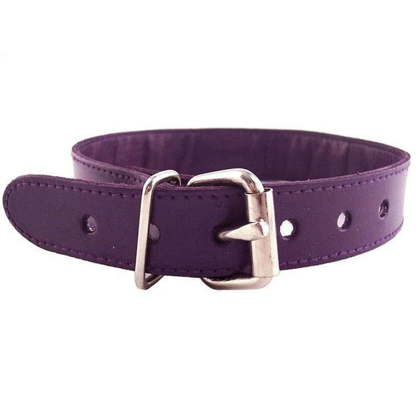 Rouge Garments Purple Studded ORing Studded Collar - Adult Planet