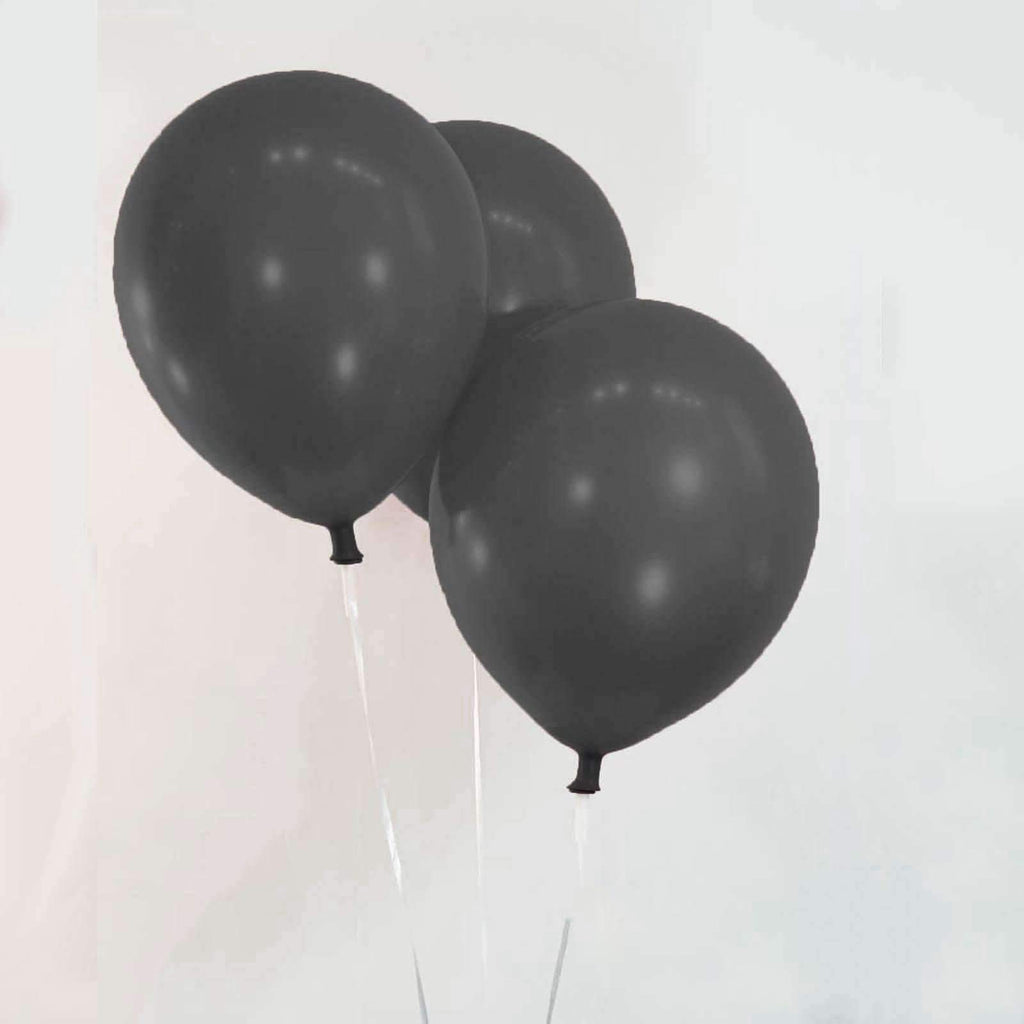 "PARTY BALLOONS 12"" 10 PACK DARK GREY"