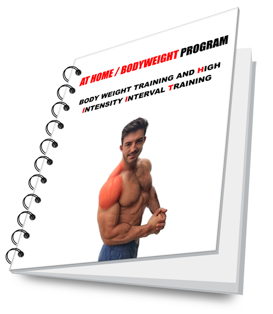 BODYWEIGHT GYM PROGRAM