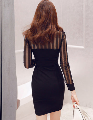Black Sheer Mesh Bodycon Dress