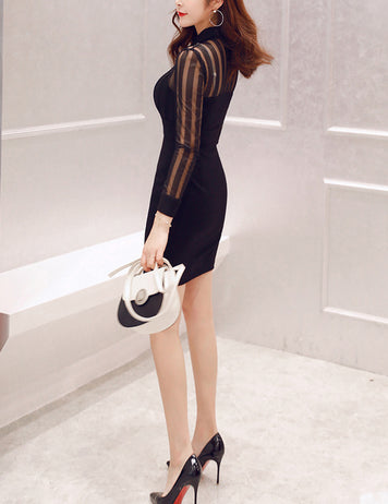Mesh Splicing Slim Long Sleeve Bodycon Dress