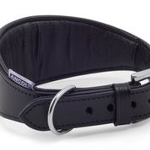 Padded Leather Whippet Collar
