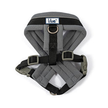 Load image into Gallery viewer, Viva Padded Harness - Black