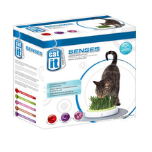 Load image into Gallery viewer, Catit Design Senses Grass Garden Kit