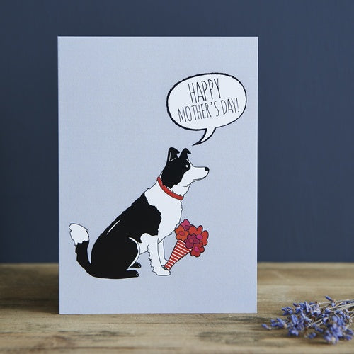 Border Collie Mother's Day Card