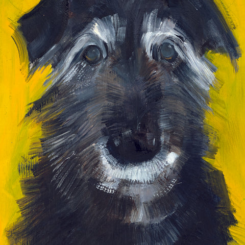 Single Greeting Card- Elderly Dog