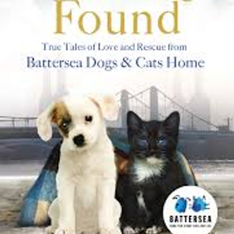Lost & Found Paperback book