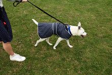Load image into Gallery viewer, Stormguard All Weather Dog Coat Navy Blue