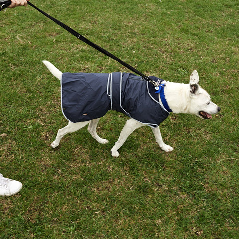 Stormguard All Weather Dog Coat Navy Blue