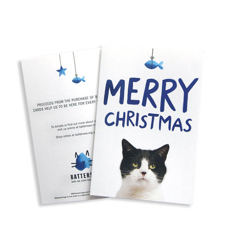 Battersea Christmas Card Pack - Black and White Cat