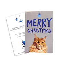 Load image into Gallery viewer, Battersea Christmas Card Pack - Ginger Cat