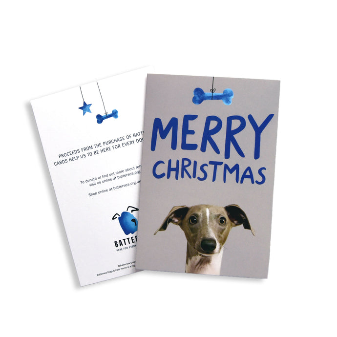 Battersea Christmas Card Pack - Italian Greyhound