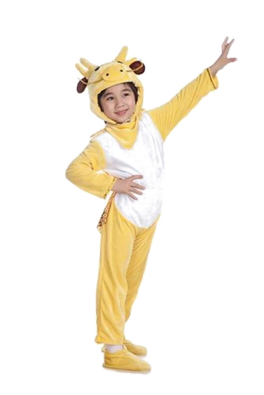 Kiddie Chinese Dragon Onesies