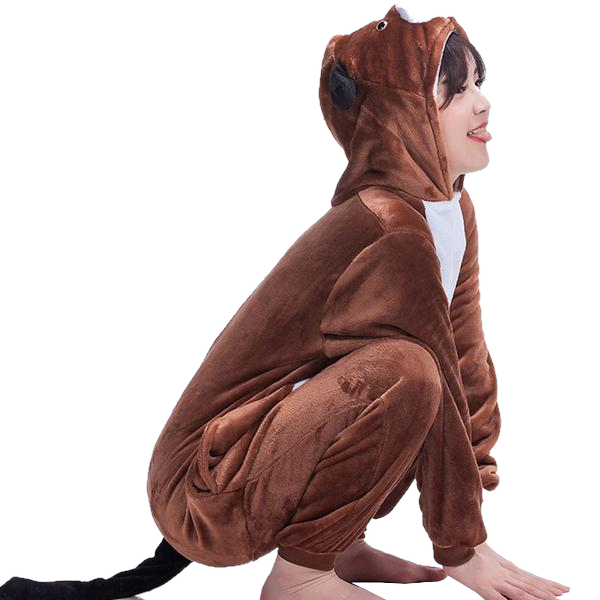 Brown Dog Onesies
