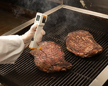 Fluke FP Plus FoodPro Plus Food Safety Thermometer, LCD Display, -31 Degrees to +525 Degrees F Temperature Range
