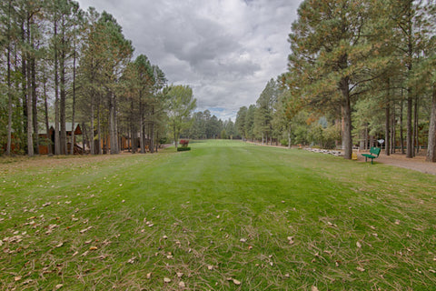 Pinetop Country Club Golf Course