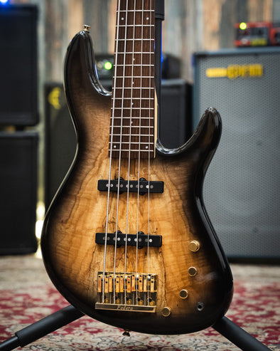 Fodera NYC Empire 5 Deluxe Spalted Maple Body
