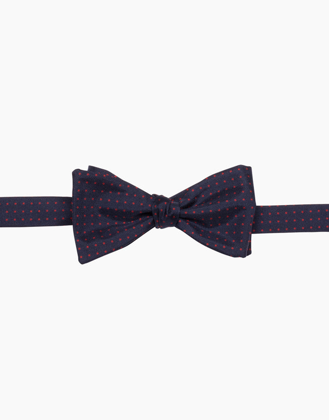 Blue and Red Dot Silk Self Tie Bow Tie