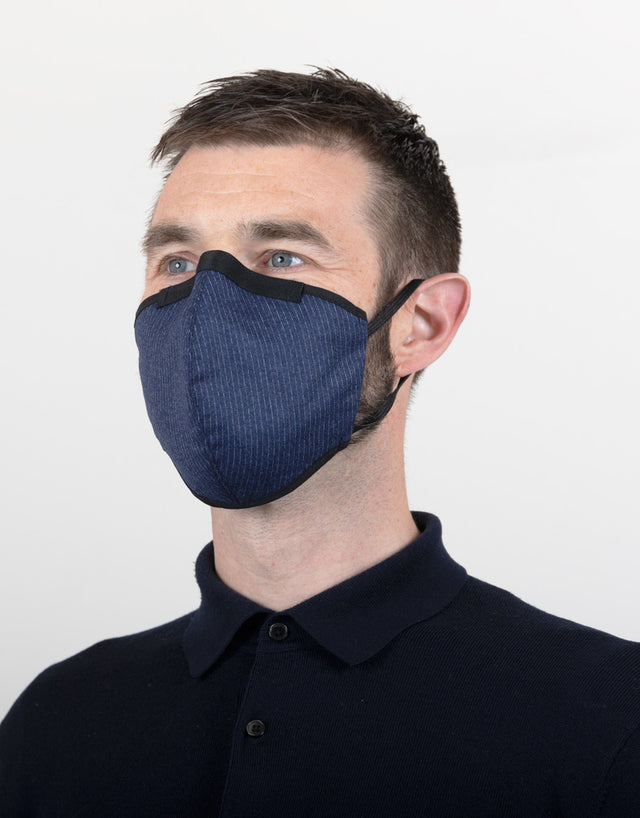 Blue Pinstripe Face Mask