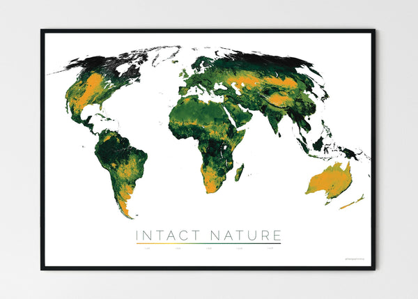 "THE WORLD AS THE STATUS OF BIODIVERSITY Mapographics Print Material INTACT_NATURE_LARGE2 / Large title / 100x70 cm (39.37x27.56"")"