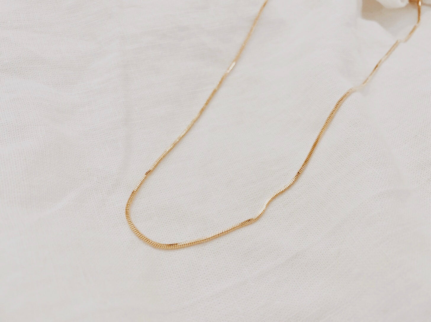 Long Delicate Snake Chain