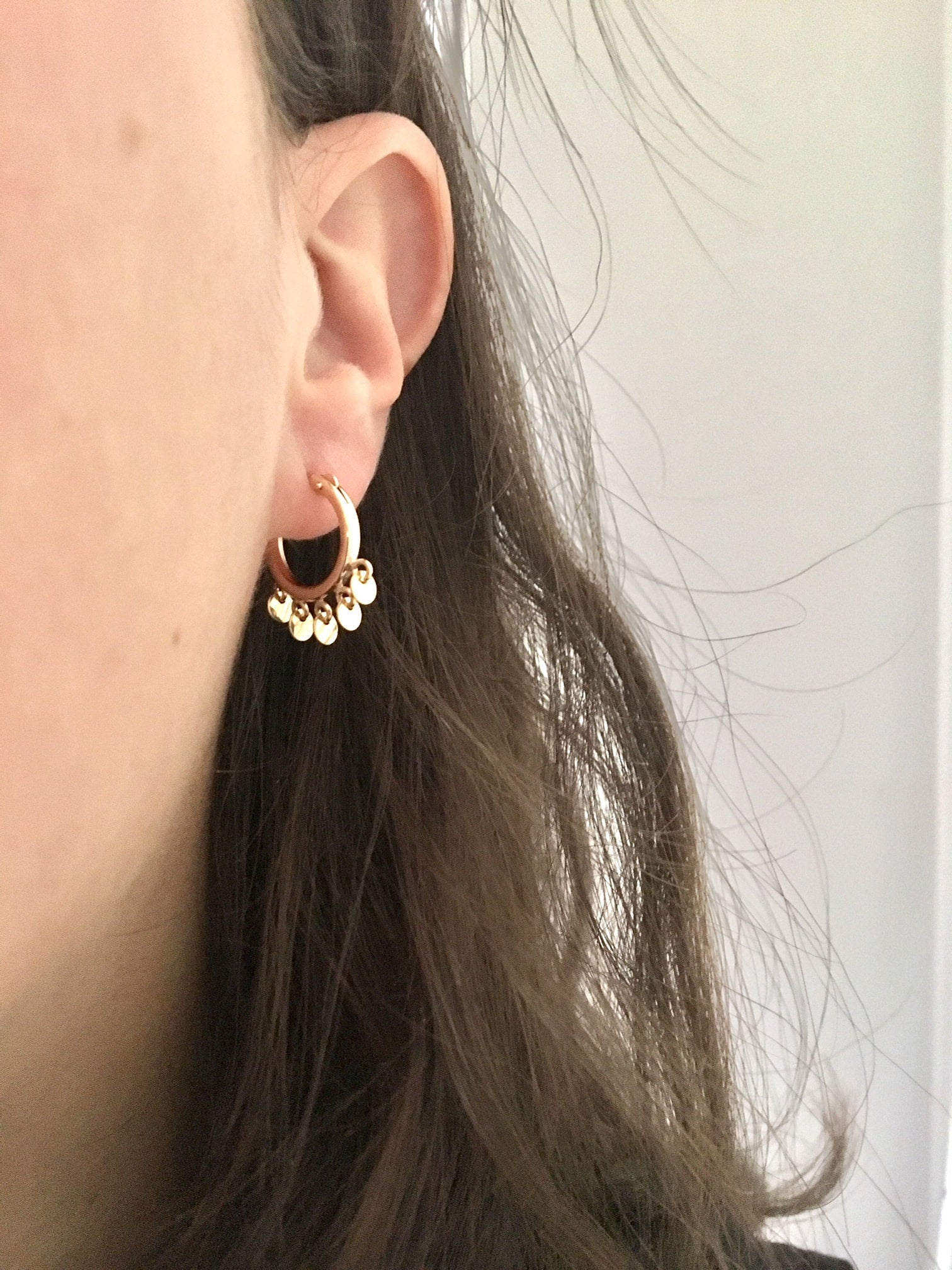 Hoop and Discs Earrings