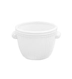 SMALL WHITE RIBBED PLANTER 2PC BOX