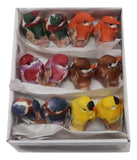 1in MINI BONGALCE BIRD ASST 24PC BOX
