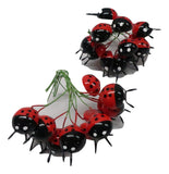20mm LADY BUG *** 24PC PKG