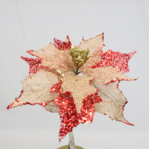POINSETTIA MIXED BUSH RED