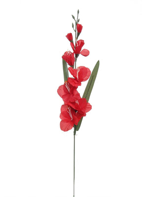 GLADIOLA SPRAY RED 12PC PKG
