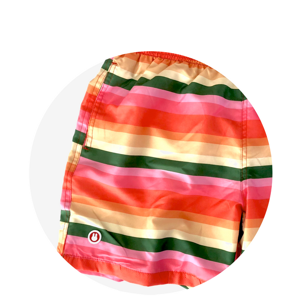 Swim Short / Funky Stripe