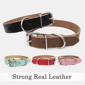 Personalised Engraved Leather Dog Collar UK - EDSG