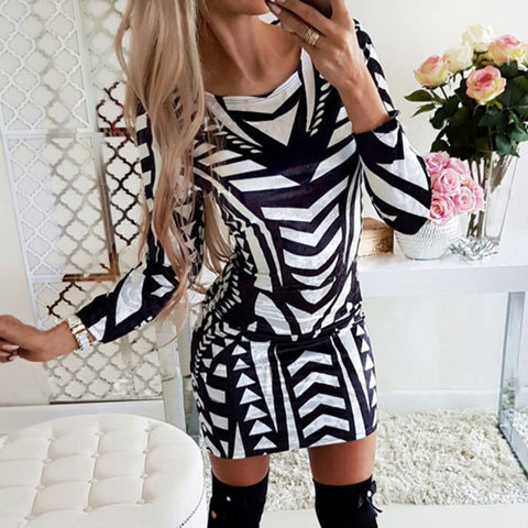 Women's Fashion Round Neck Colorblock Long Sleeve Slim Dress