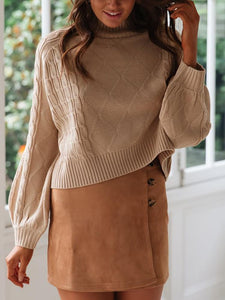 PMS Sweaters Casual High Collar Long Sleeve Pure Colour Sweater