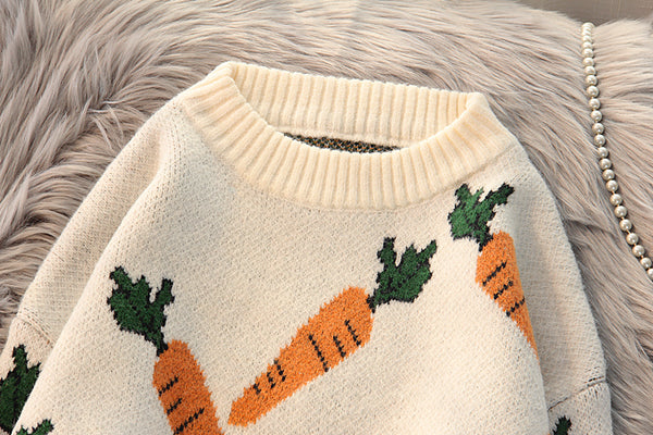 Cute Carrot Sweater PN2783