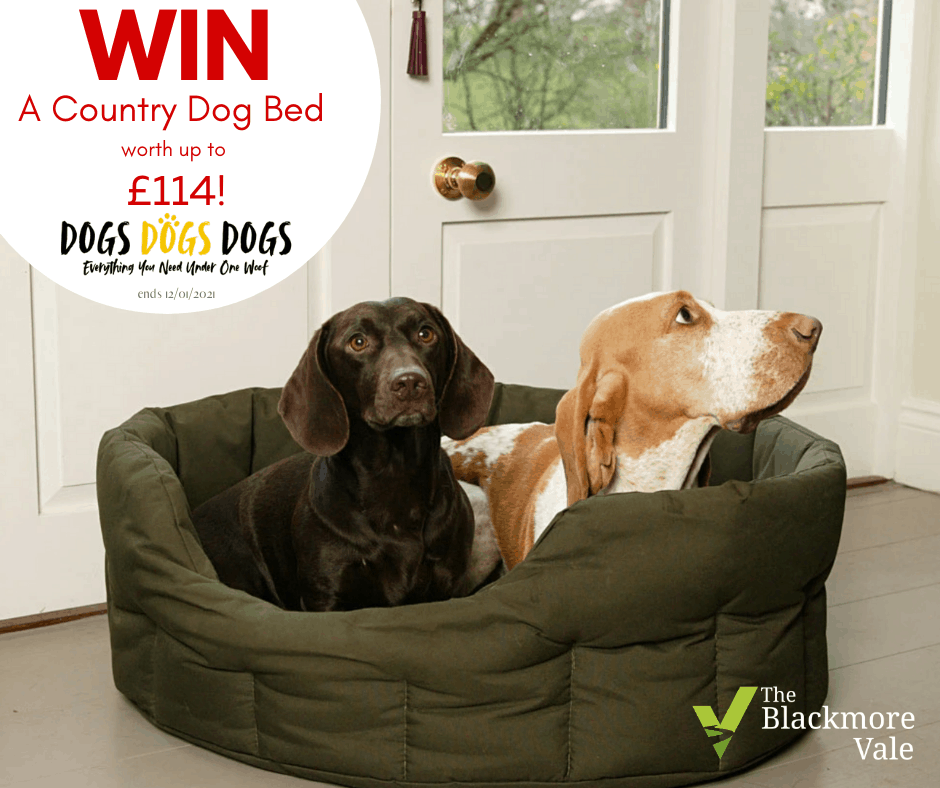 Win a Country Dog Waterproof Bed Worth £100+