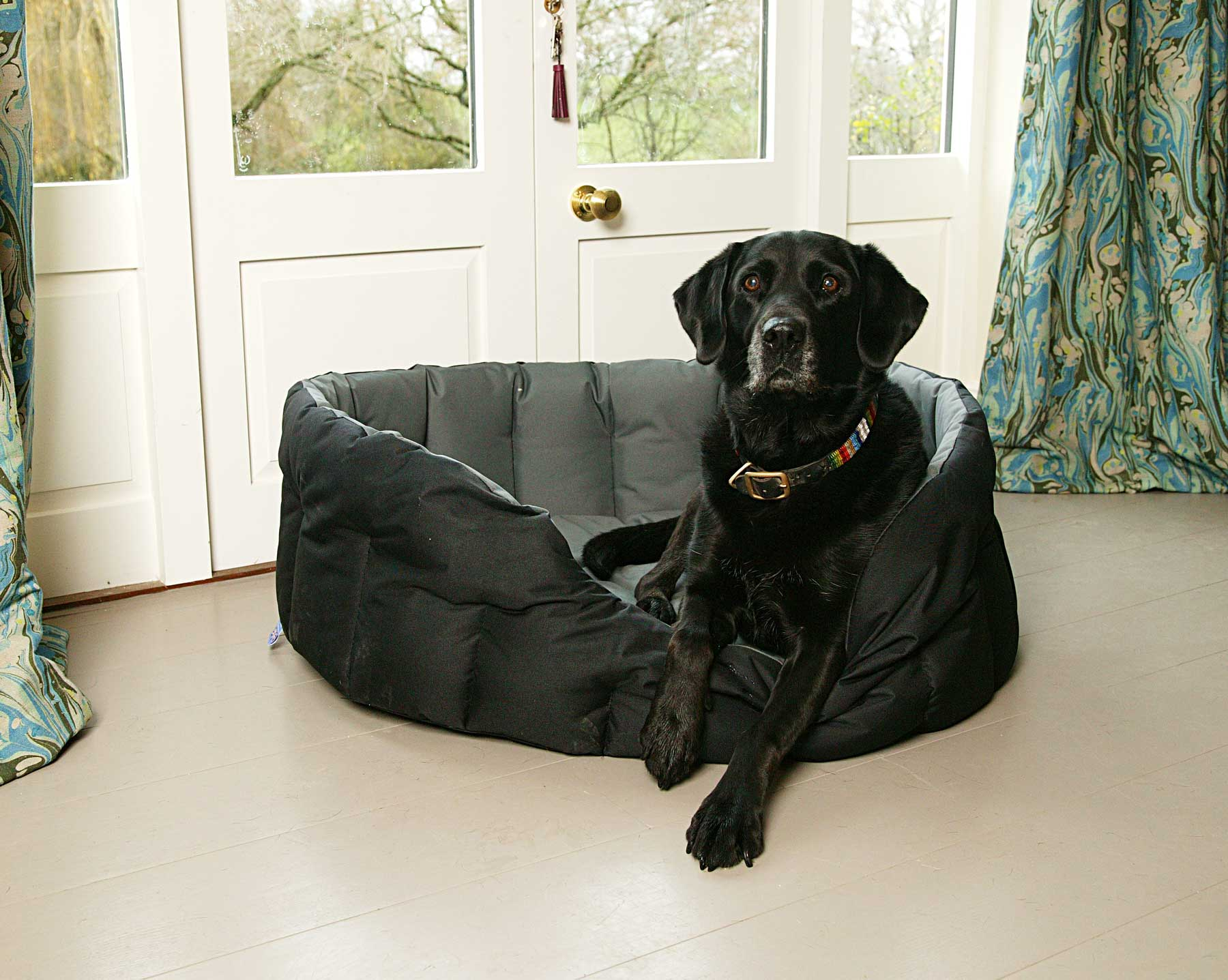 The Importance of Keeping Your Dog's Bed Clean