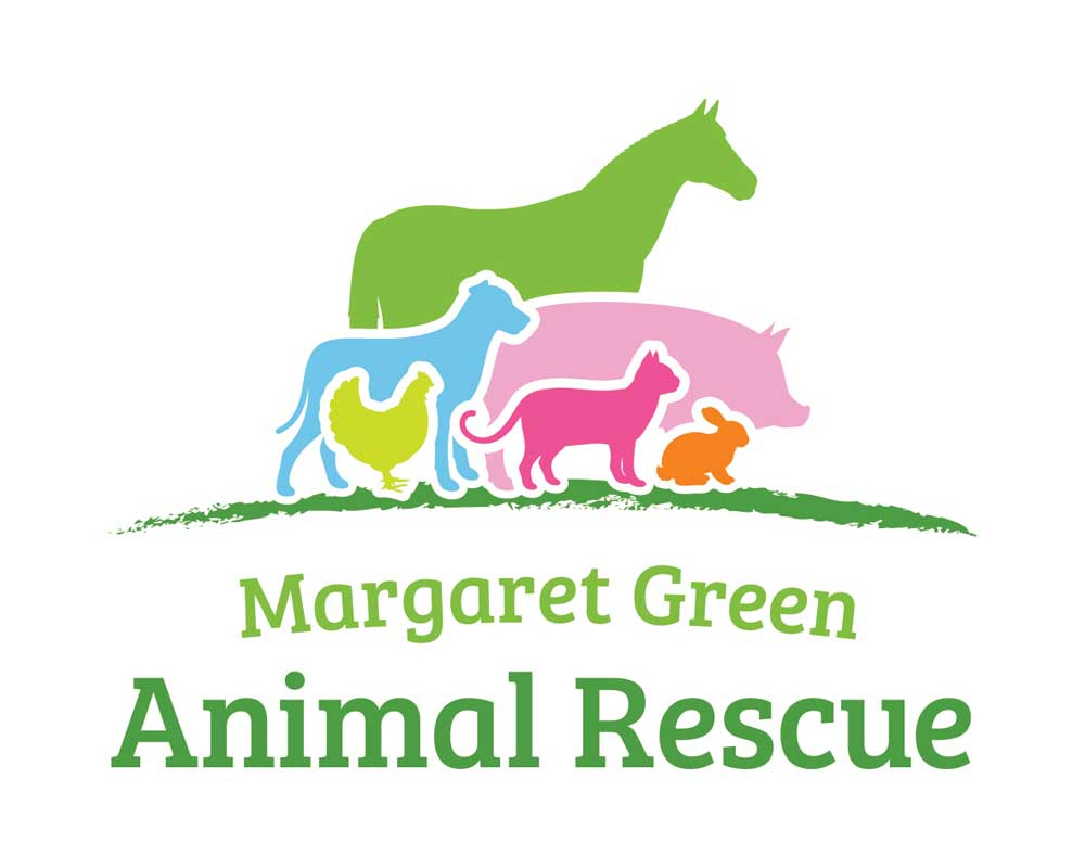 Introducing our Charity Partner - Margaret Green Animal Rescue