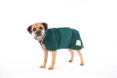 Holly Tries Out a Ruff & Tumble Dog Drying Coat
