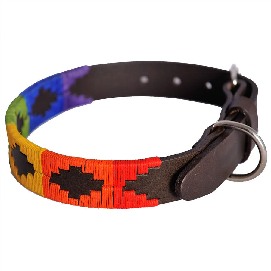 Pioneros Polo Dog Collar - Rainbow, Animals & Pet Supplies by Dogs Dogs Dogs