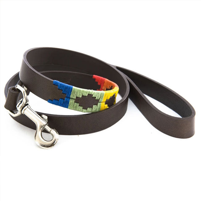Pioneros Polo Dog Lead - Rainbow, Animals & Pet Supplies by Dogs Dogs Dogs