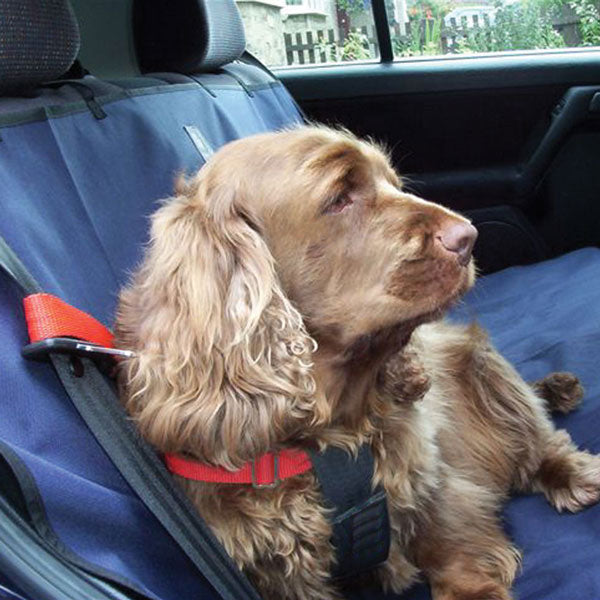 Danish Design Waterproof Car Seat Cover, Dog Supplies by Dogs Dogs Dogs