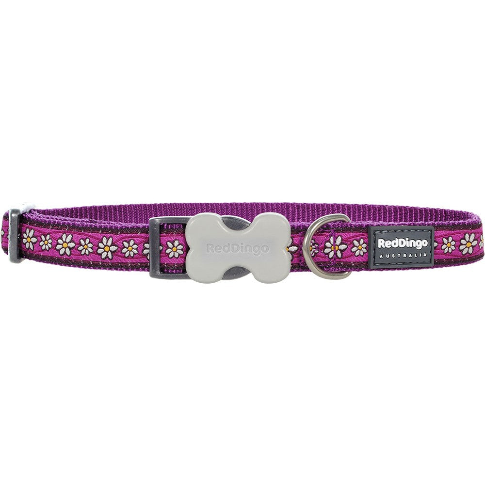 Red Dingo Daisy Chain Purple Collar, Pet Collars & Harnesses by Dogs Dogs Dogs
