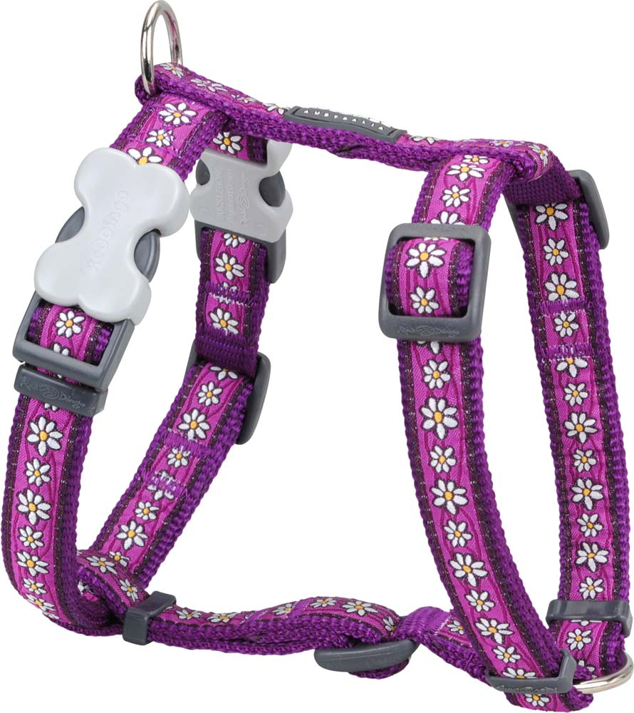 Red Dingo Daisy Chain Purple Harness, Pet Collars & Harnesses by Dogs Dogs Dogs