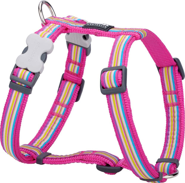 Red Dingo Striped Harness