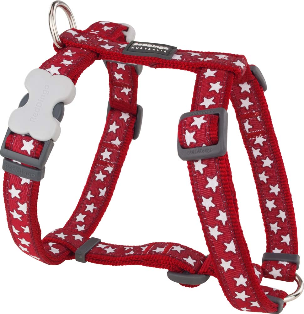 Red Dingo Stars Harness by  Dogs Dogs Dogs
