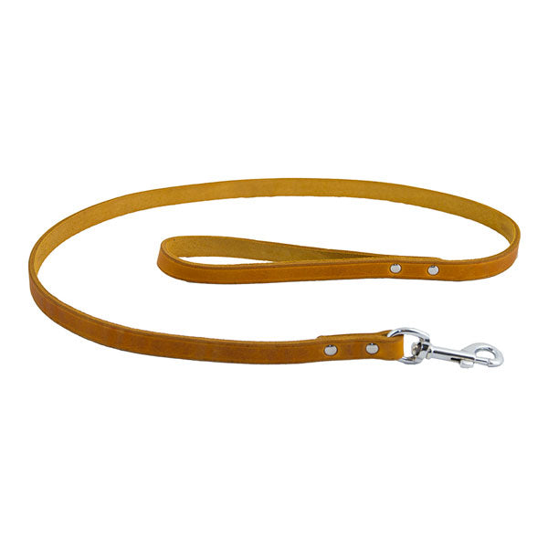 Earthbound Soft Country Tan Leather Lead, Pet Leads by Dogs Dogs Dogs