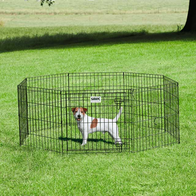 Savic Dog Park Puppy Pen, Pet Playpens by Dogs Dogs Dogs
