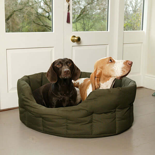 Country Dog Heavy Duty Oval Waterproof Bed in Green